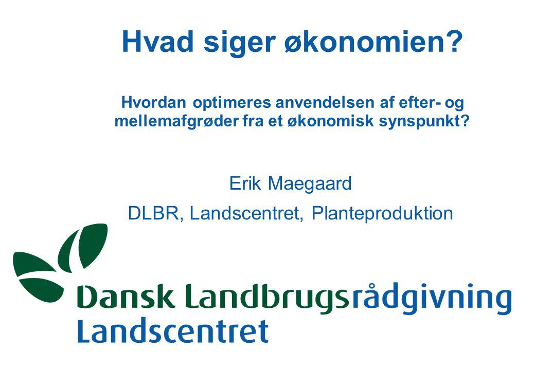 Erik Maegaard DLBR, Landscentret, Planteproduktion