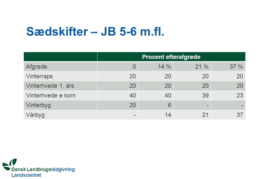 Sædskifter – JB 5-6 m.fl. Procent efterafgrøde Afgrøde 14 % 21 % 37 %