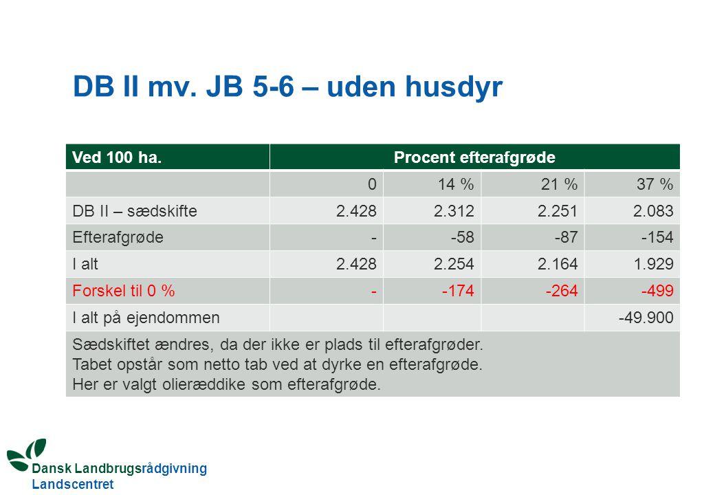 DB II mv. JB 5-6 – uden husdyr