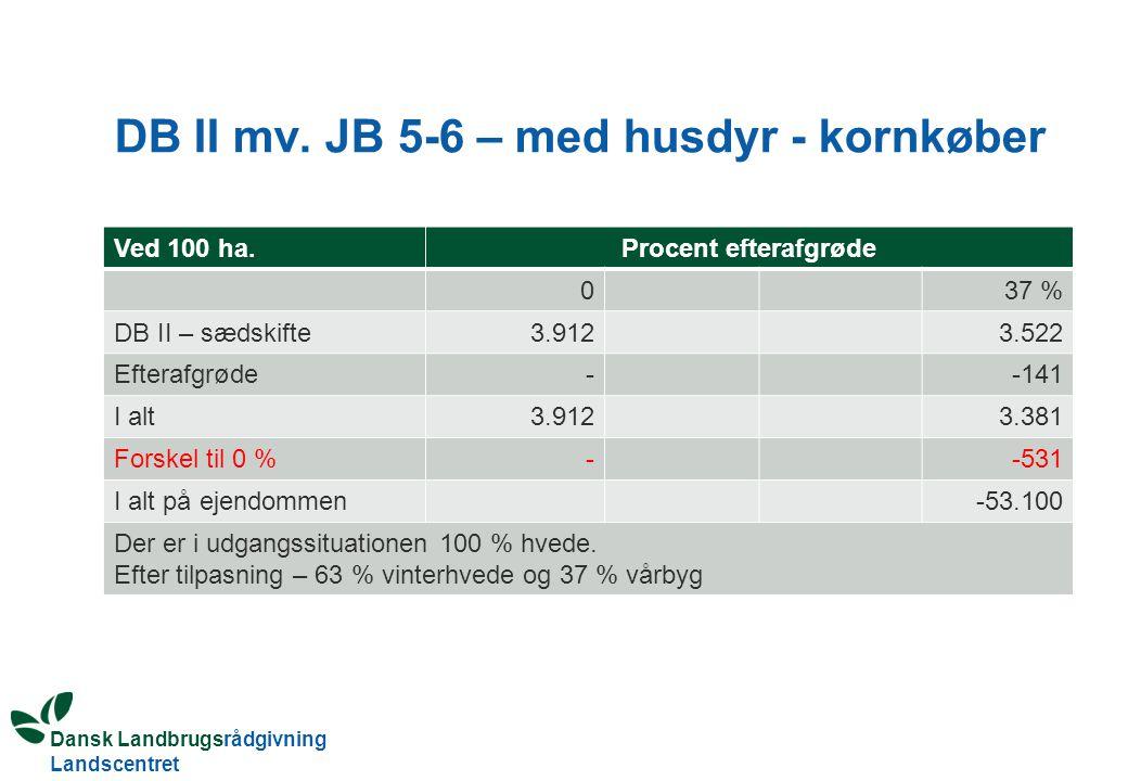 DB II mv. JB 5-6 – med husdyr - kornkøber