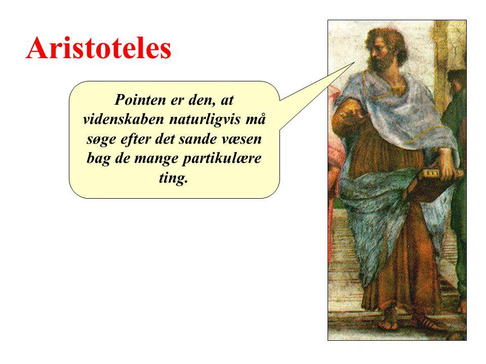 Aristoteles Pointen er den, at videnskaben naturligvis må søge efter det sande væsen bag de mange partikulære ting.