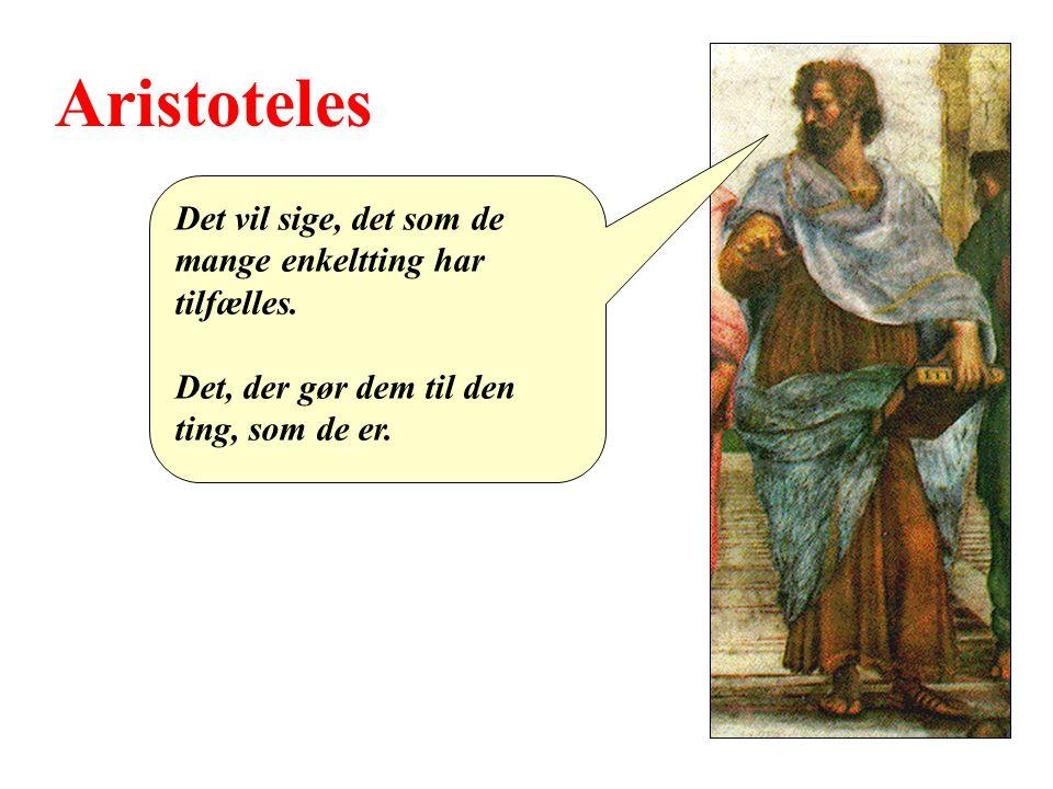 Aristoteles Det vil sige, det som de mange enkeltting har tilfælles.