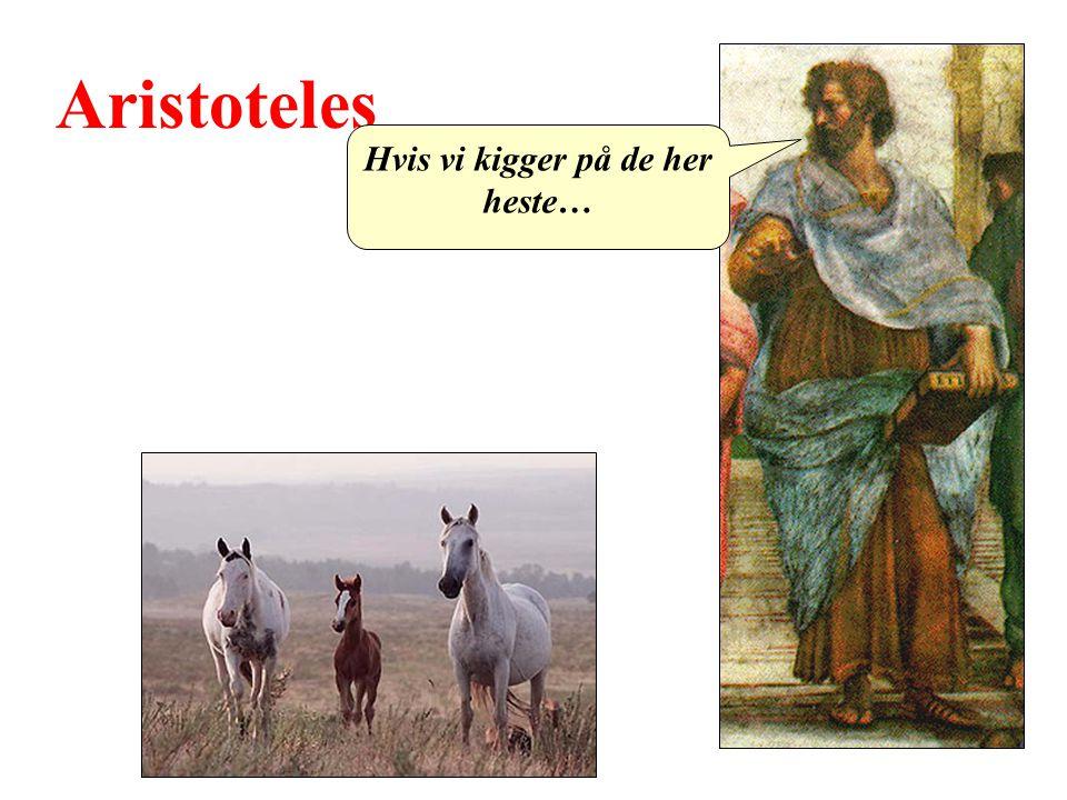 Hvis vi kigger på de her heste…