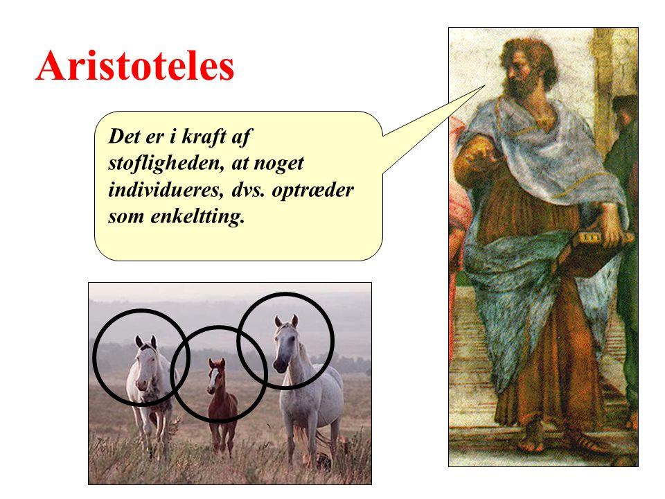 Aristoteles Det er i kraft af stofligheden, at noget individueres, dvs. optræder som enkeltting.