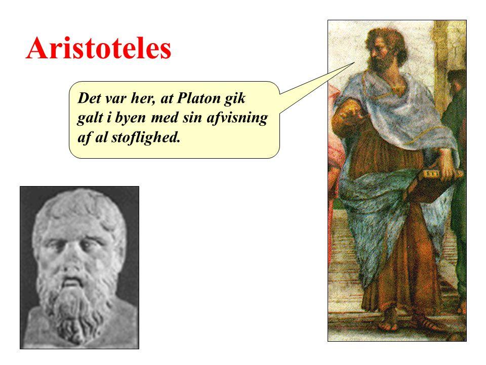 Aristoteles Det var her, at Platon gik galt i byen med sin afvisning af al stoflighed.