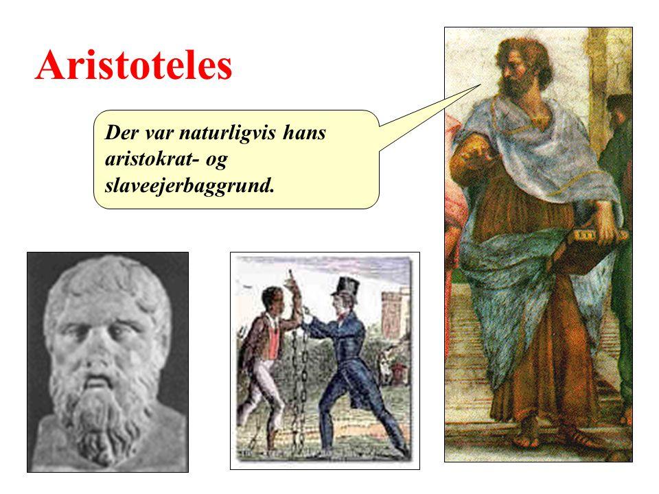 Aristoteles Der var naturligvis hans aristokrat- og slaveejerbaggrund.