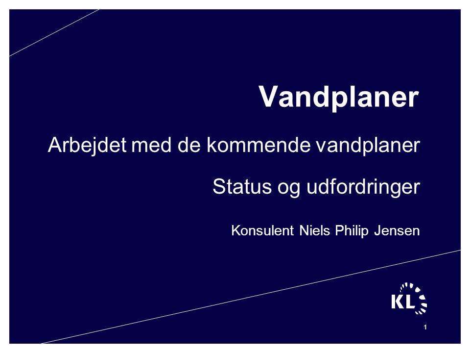 Konsulent Niels Philip Jensen