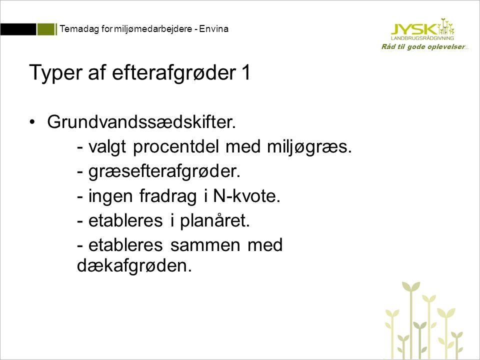 Typer af efterafgrøder 1
