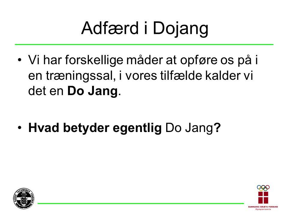 Adfærd i Dojang Vi har forskellige måder at opføre os på i en træningssal, i vores tilfælde kalder vi det en Do Jang.