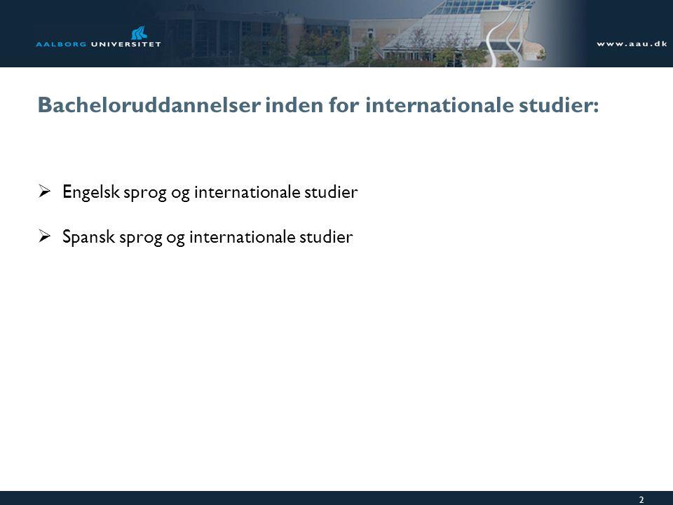 Bacheloruddannelser inden for internationale studier: