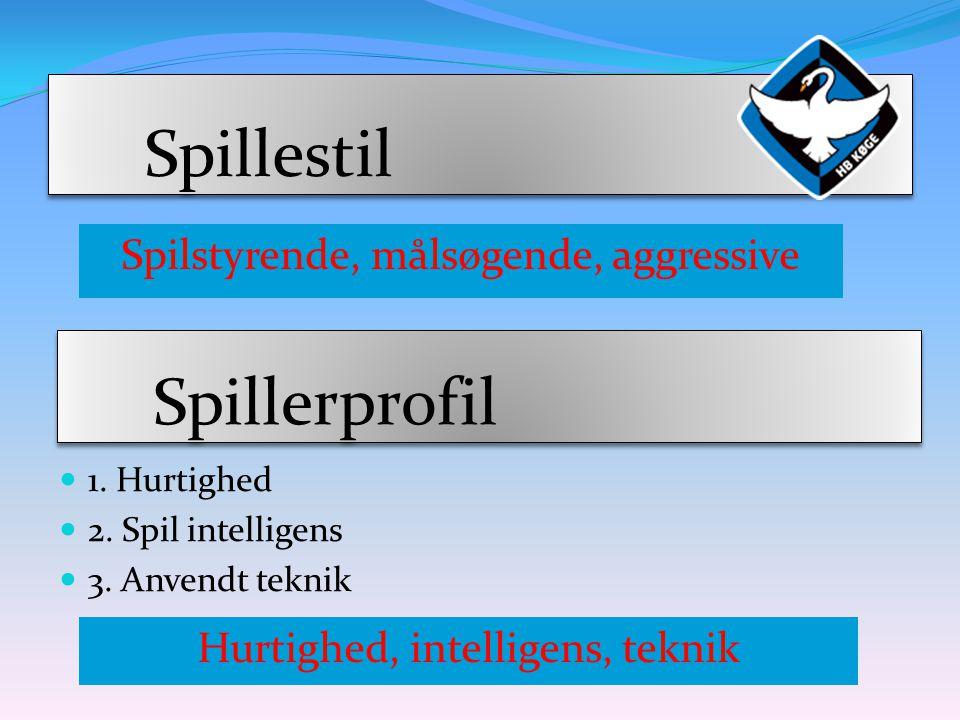 Spillestil Spillerprofil Spilstyrende, målsøgende, aggressive