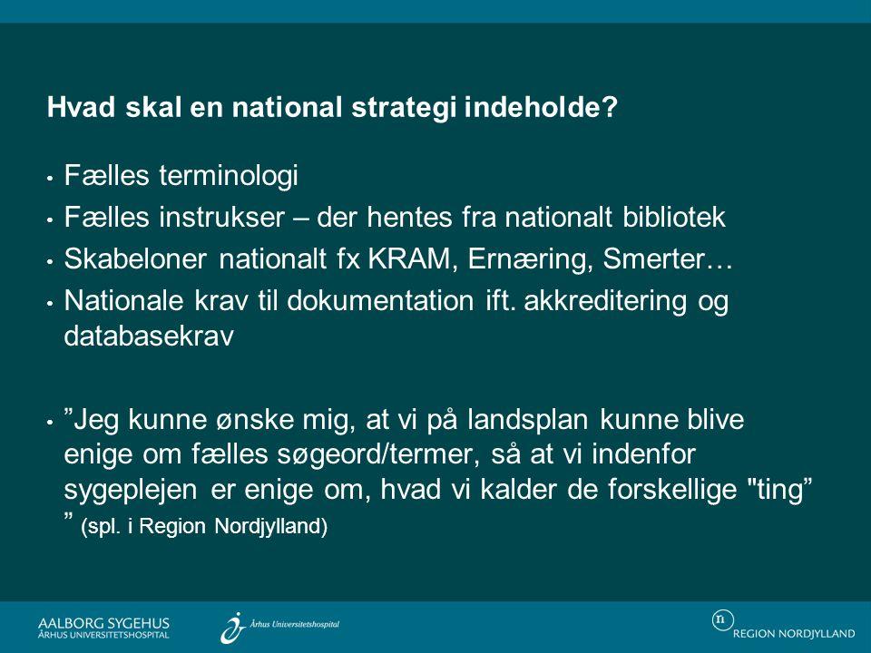 Hvad skal en national strategi indeholde