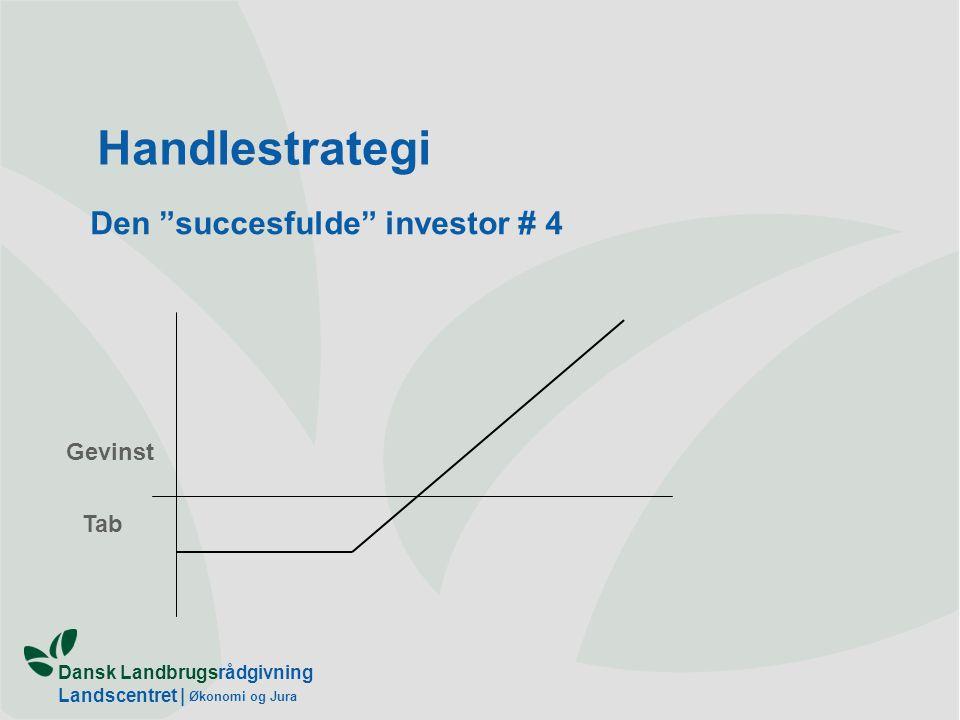Den succesfulde investor # 4