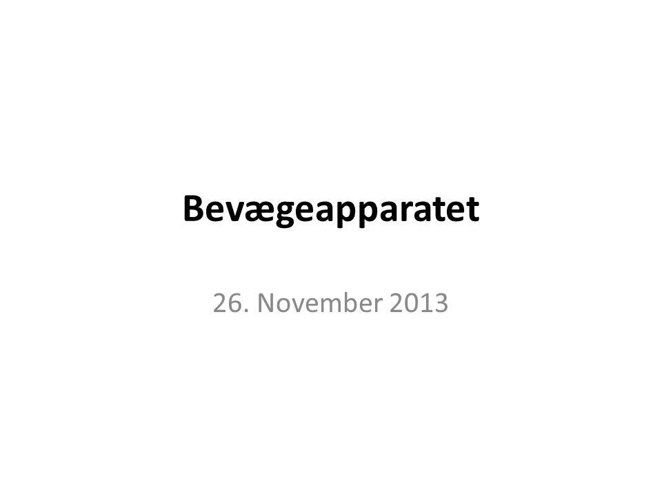 Bevægeapparatet 26. November 2013