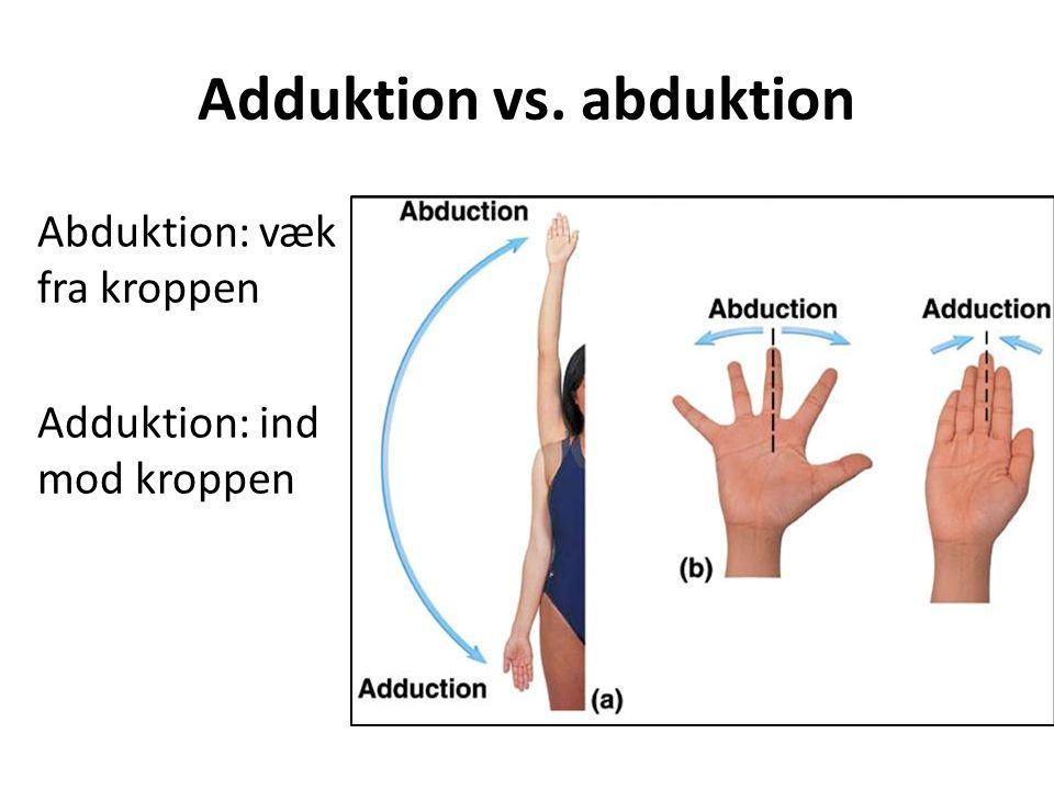 Adduktion vs. abduktion
