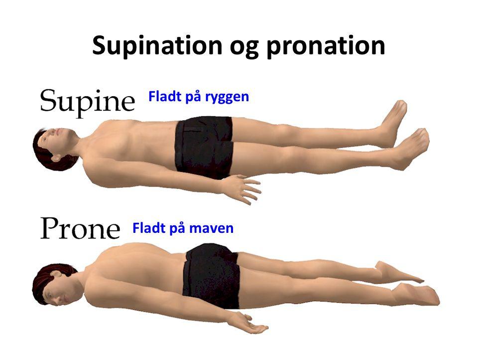 Supination og pronation