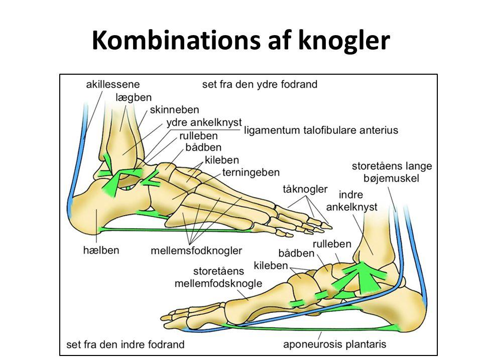 Kombinations af knogler