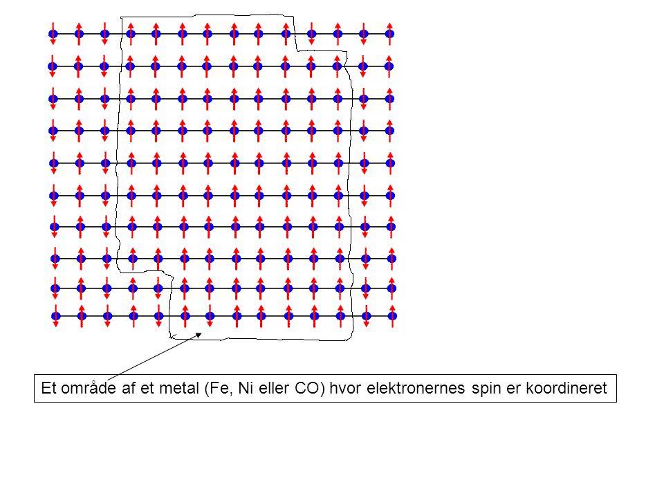 Et område af et metal (Fe, Ni eller CO) hvor elektronernes spin er koordineret