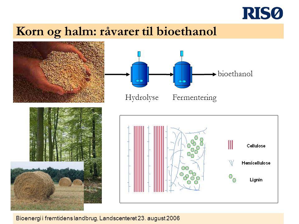 Korn og halm: råvarer til bioethanol