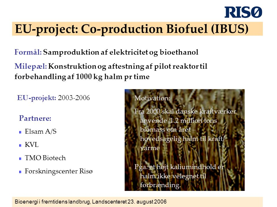 EU-project: Co-production Biofuel (IBUS)
