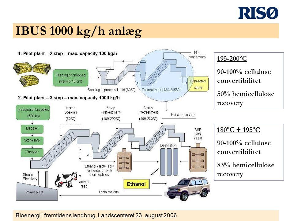 IBUS 1000 kg/h anlæg 195-200ºC 90-100% cellulose convertibilitet