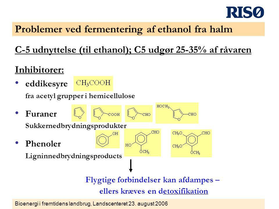 Problemer ved fermentering af ethanol fra halm