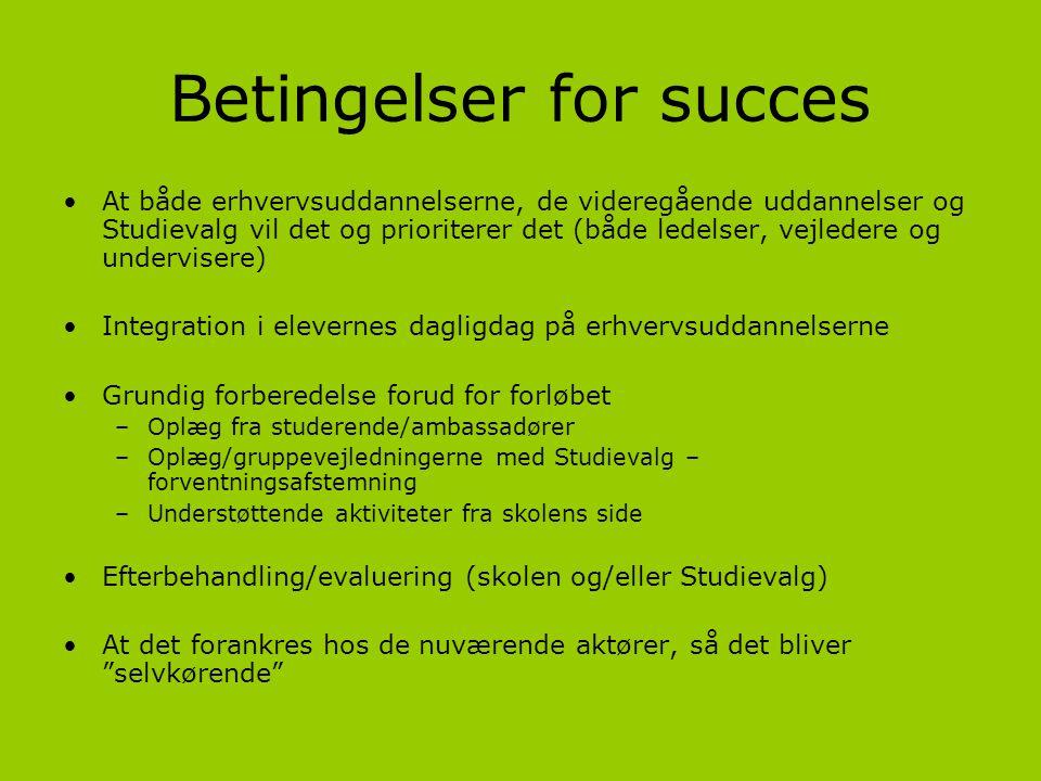 Betingelser for succes