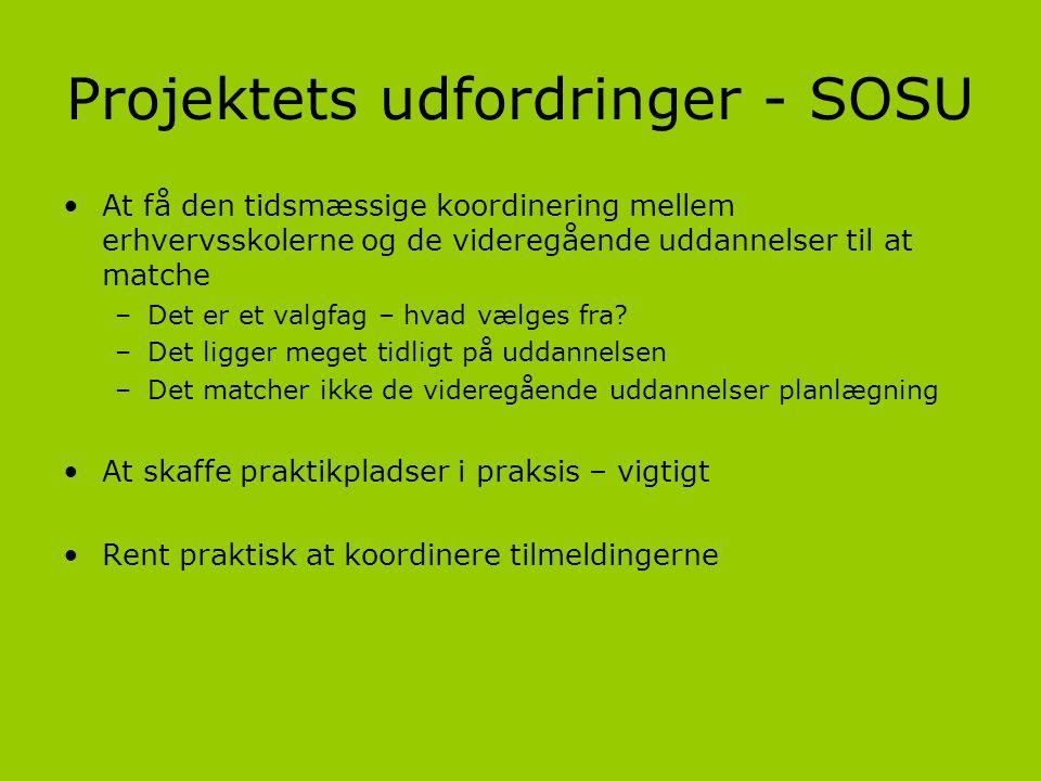 Projektets udfordringer - SOSU
