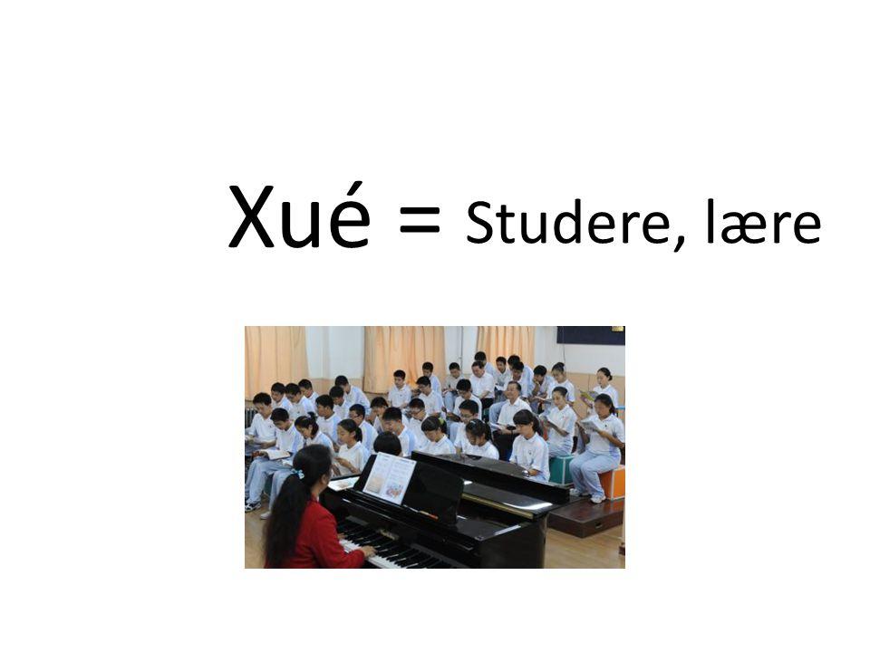 Xué = Studere, lære