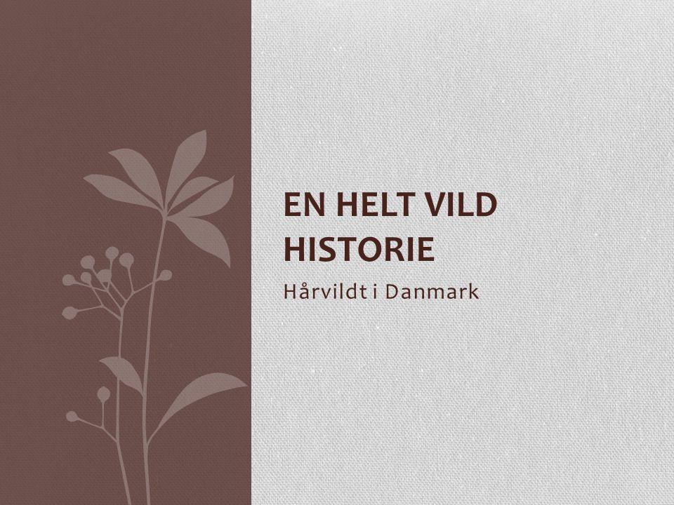En helt vild historie Hårvildt i Danmark