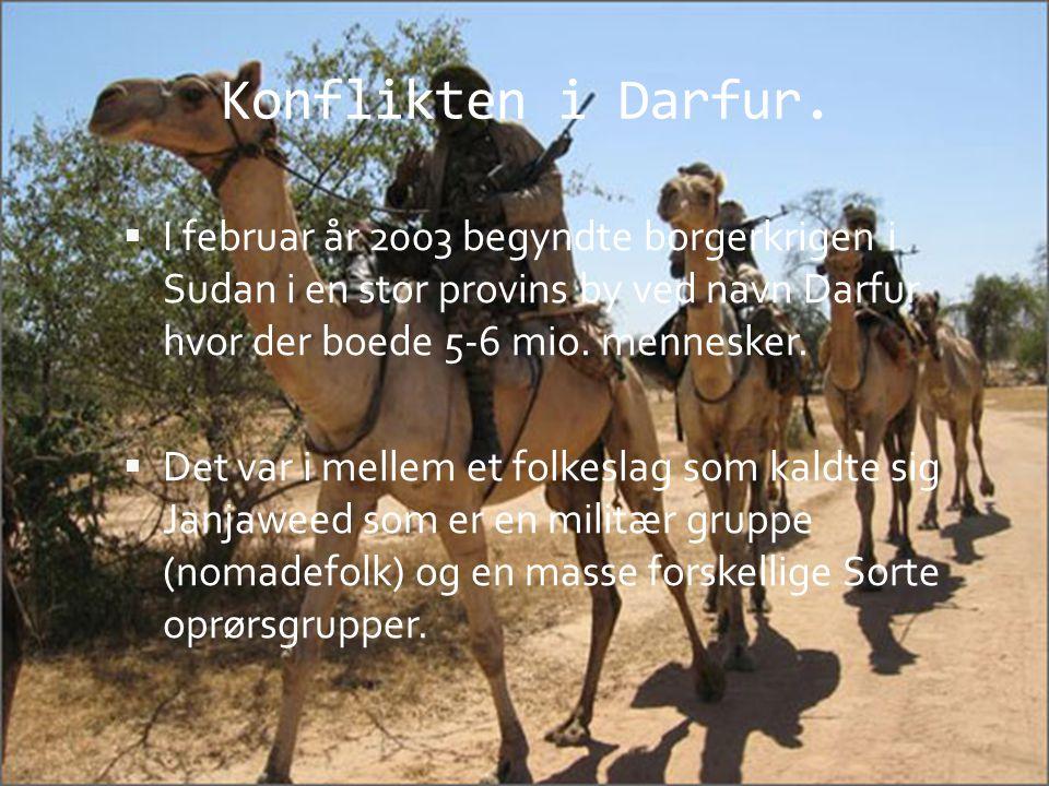 Konflikten i Darfur. I februar år 2003 begyndte borgerkrigen i Sudan i en stor provins by ved navn Darfur hvor der boede 5-6 mio. mennesker.