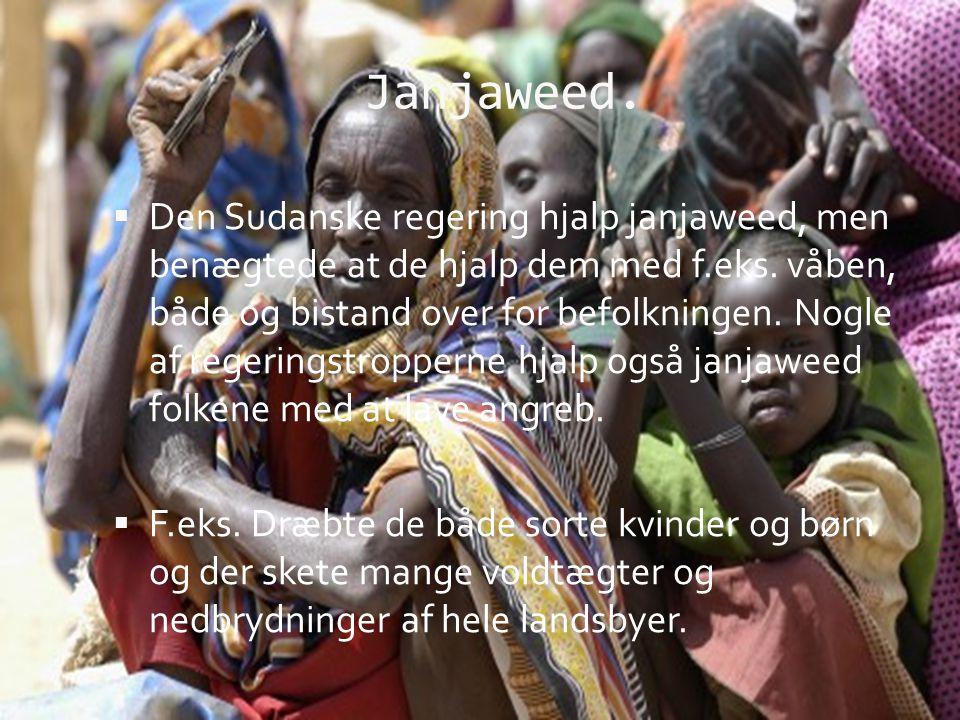 Janjaweed.