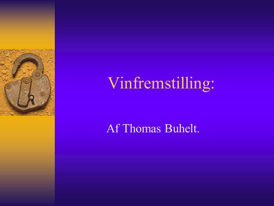 Vinfremstilling: Af Thomas Buhelt.