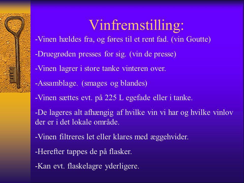 Vinfremstilling: -Vinen hældes fra, og føres til et rent fad. (vin Goutte) -Druegrøden presses for sig. (vin de presse)