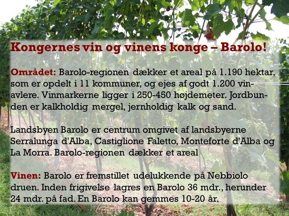 Kongernes vin og vinens konge – Barolo!