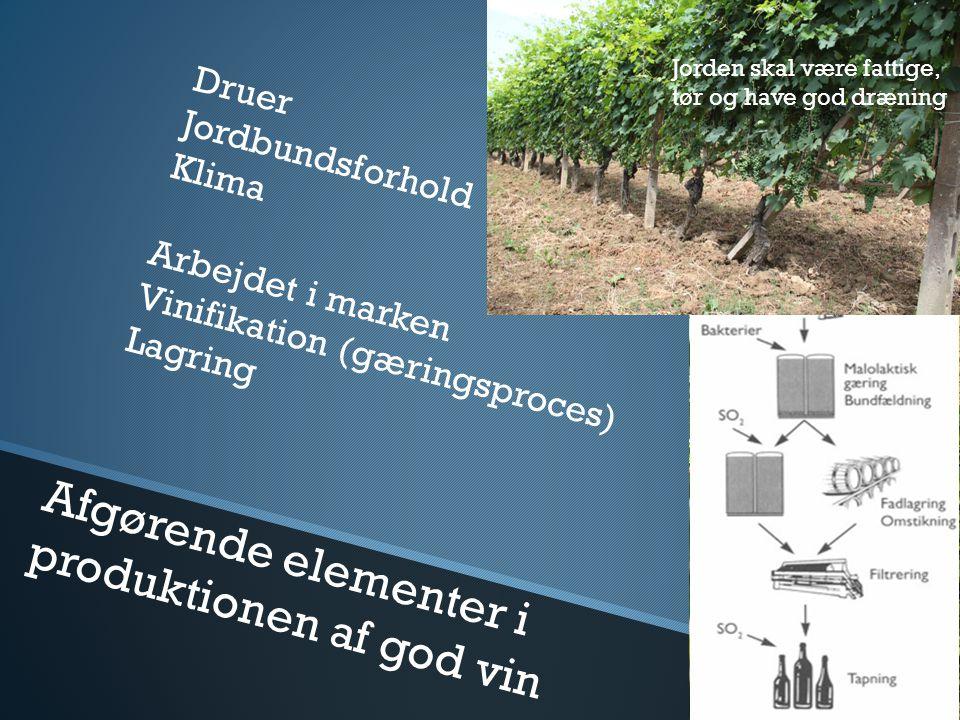 Afgørende elementer i produktionen af god vin