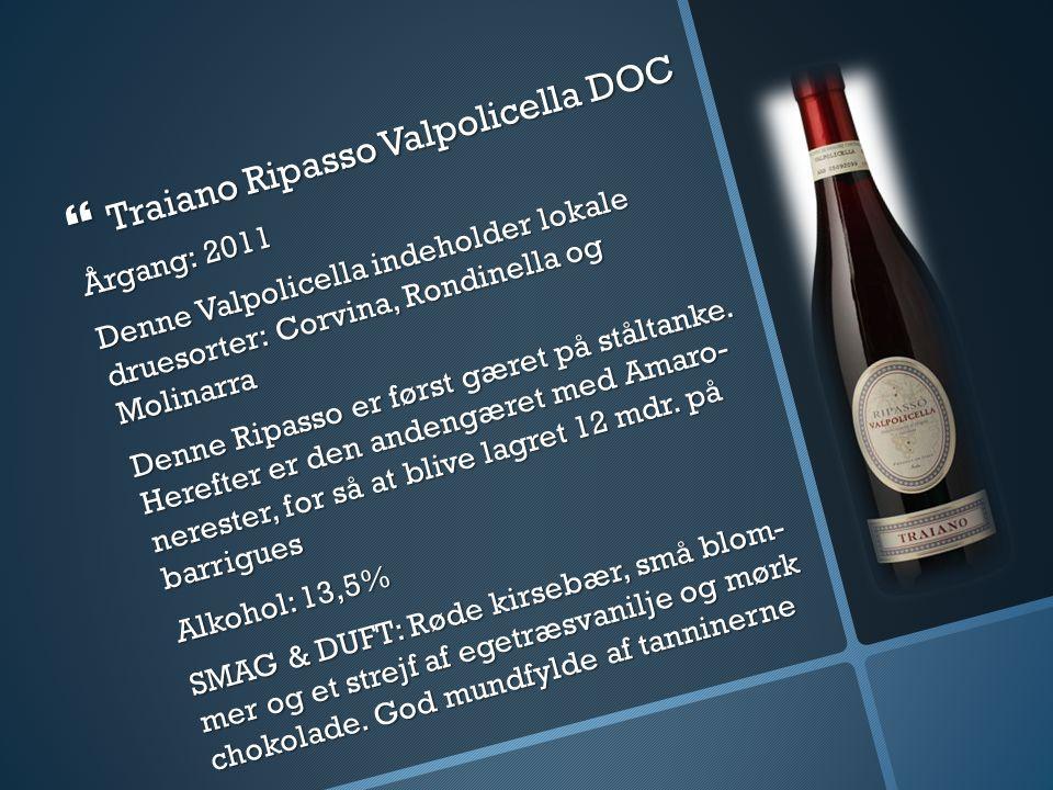 Traiano Ripasso Valpolicella DOC