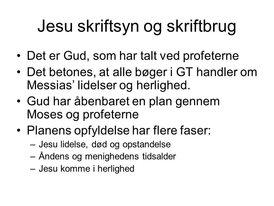 Jesu skriftsyn og skriftbrug