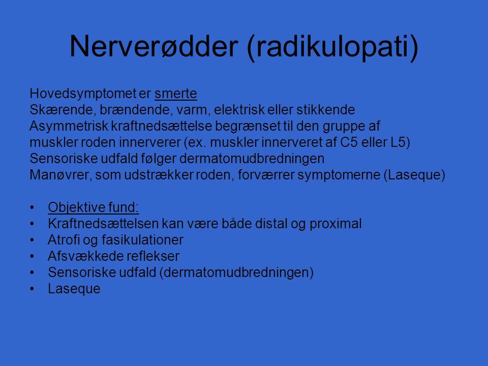 Nerverødder (radikulopati)