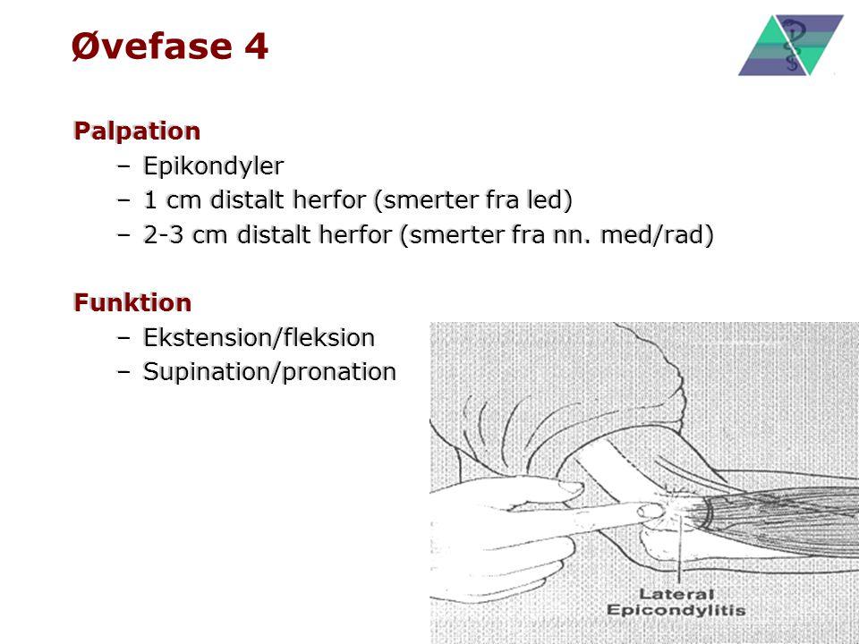 Øvefase 4 Palpation Epikondyler 1 cm distalt herfor (smerter fra led)