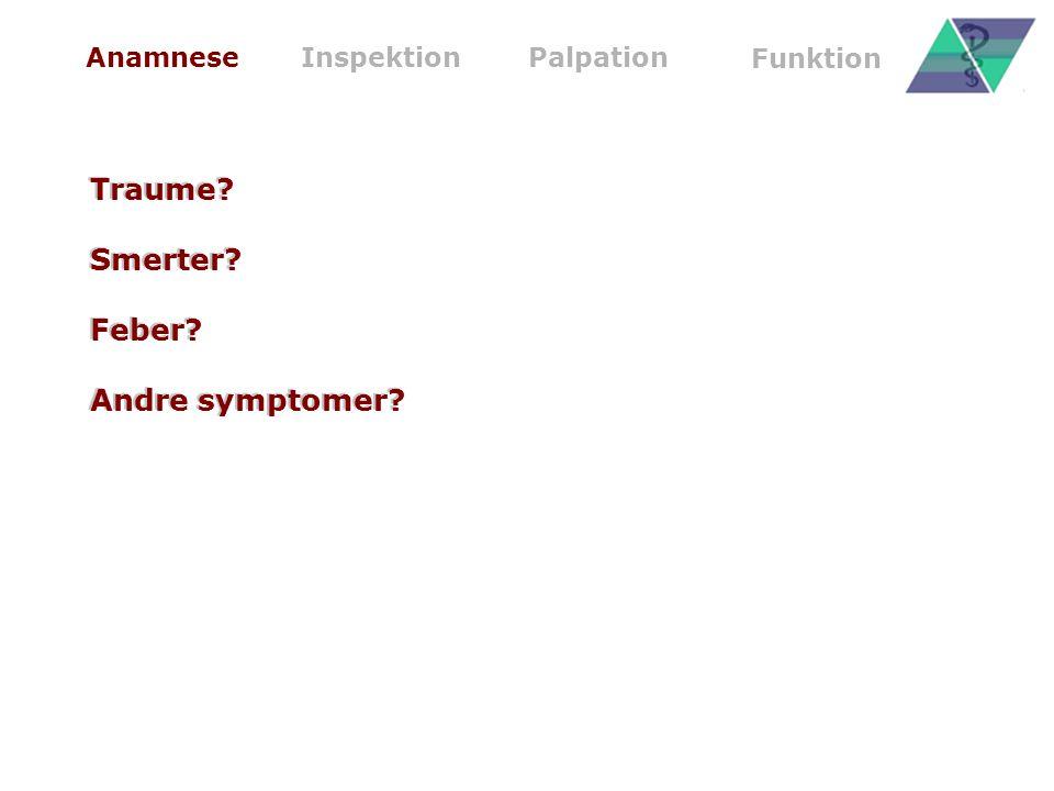 Traume Smerter Feber Andre symptomer