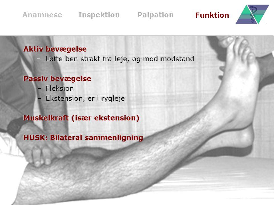 Løfte ben strakt fra leje, og mod modstand Passiv bevægelse Fleksion