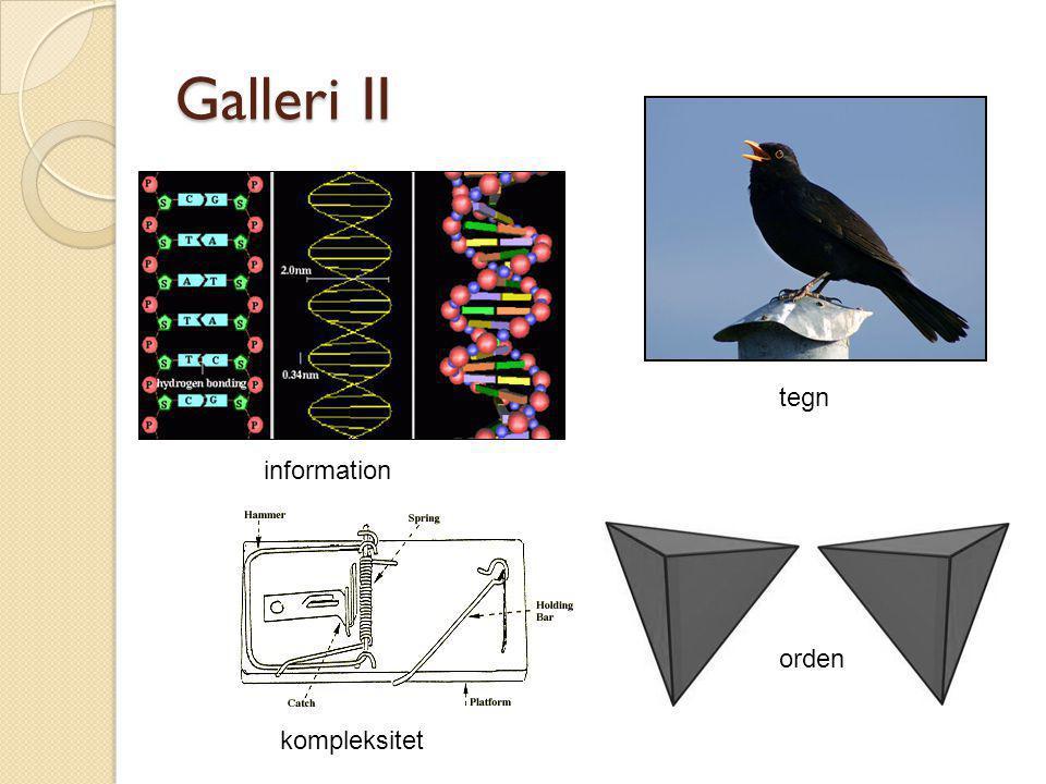 Galleri II tegn information orden kompleksitet