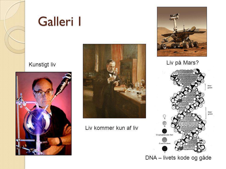 Galleri I Liv på Mars Kunstigt liv Liv kommer kun af liv
