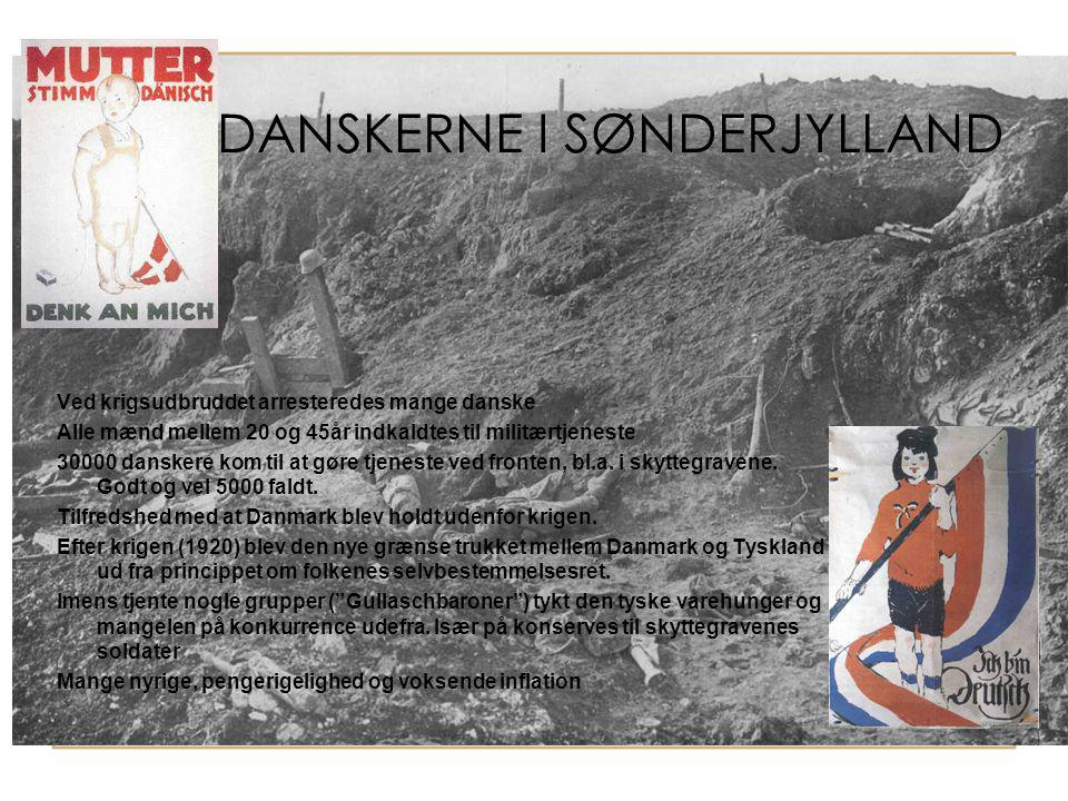 DANSKERNE I SØNDERJYLLAND