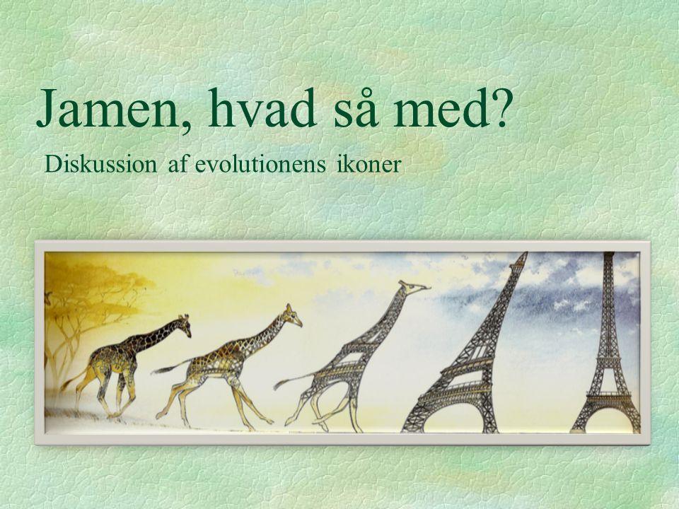 Jamen, hvad så med Diskussion af evolutionens ikoner