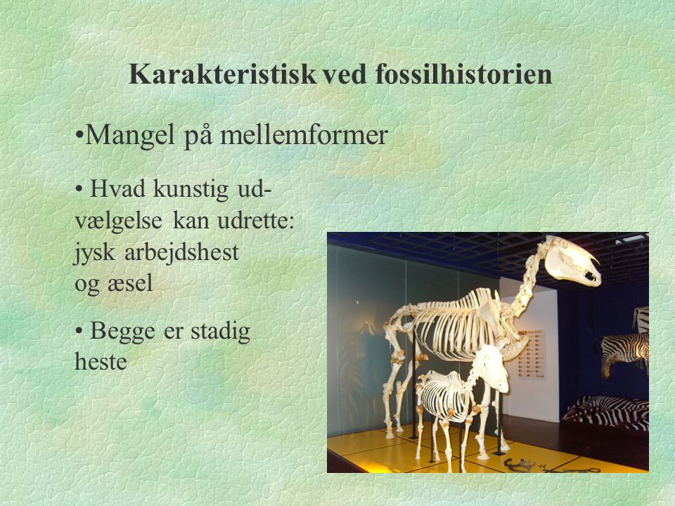 Karakteristisk ved fossilhistorien