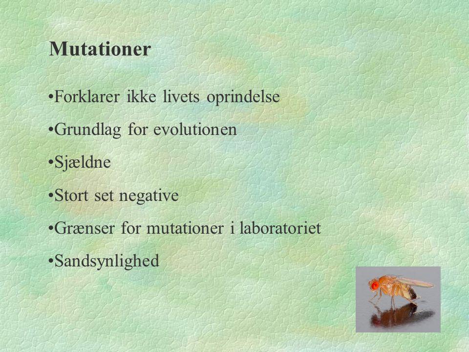 Mutationer Forklarer ikke livets oprindelse Grundlag for evolutionen