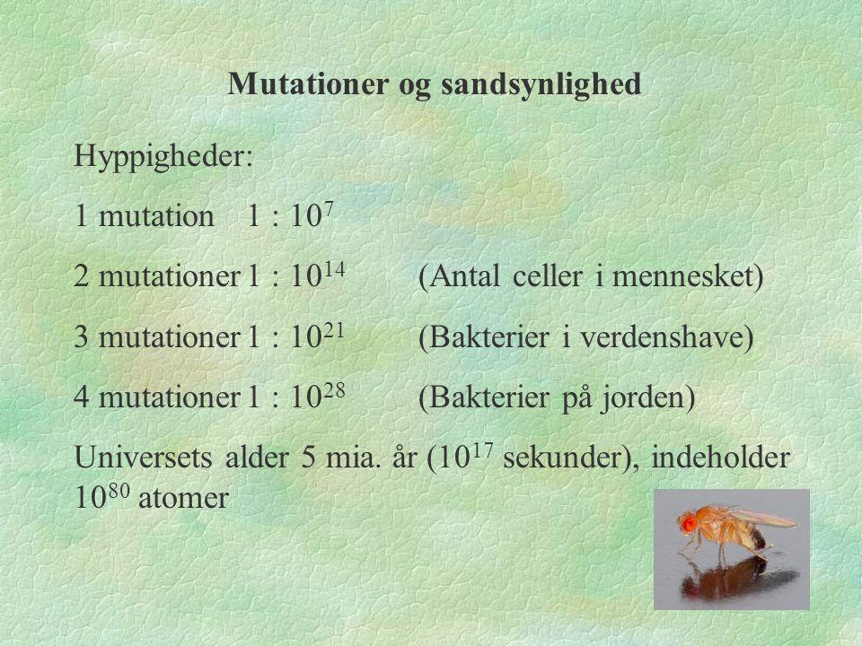 Mutationer og sandsynlighed