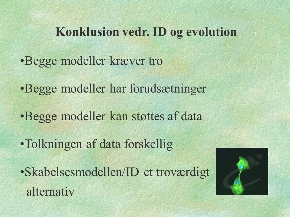 Konklusion vedr. ID og evolution